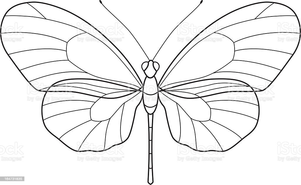 Outline Butterfly royalty-free stock vector art