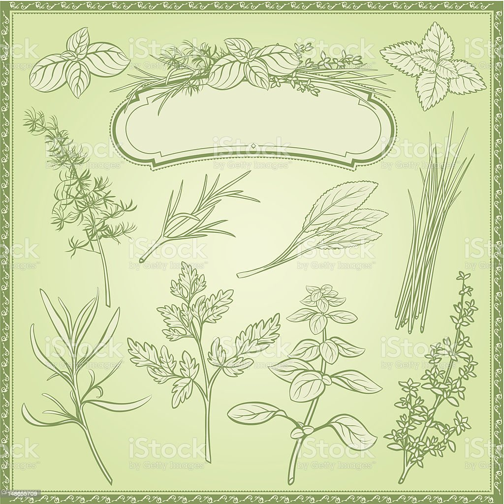 Outline Herbs Set royalty-free stock vector art