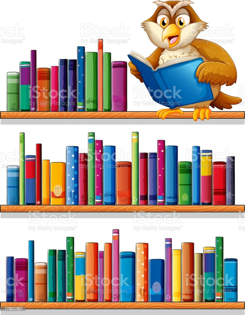 Owl above the wooden bookshelves with books vector art illustration