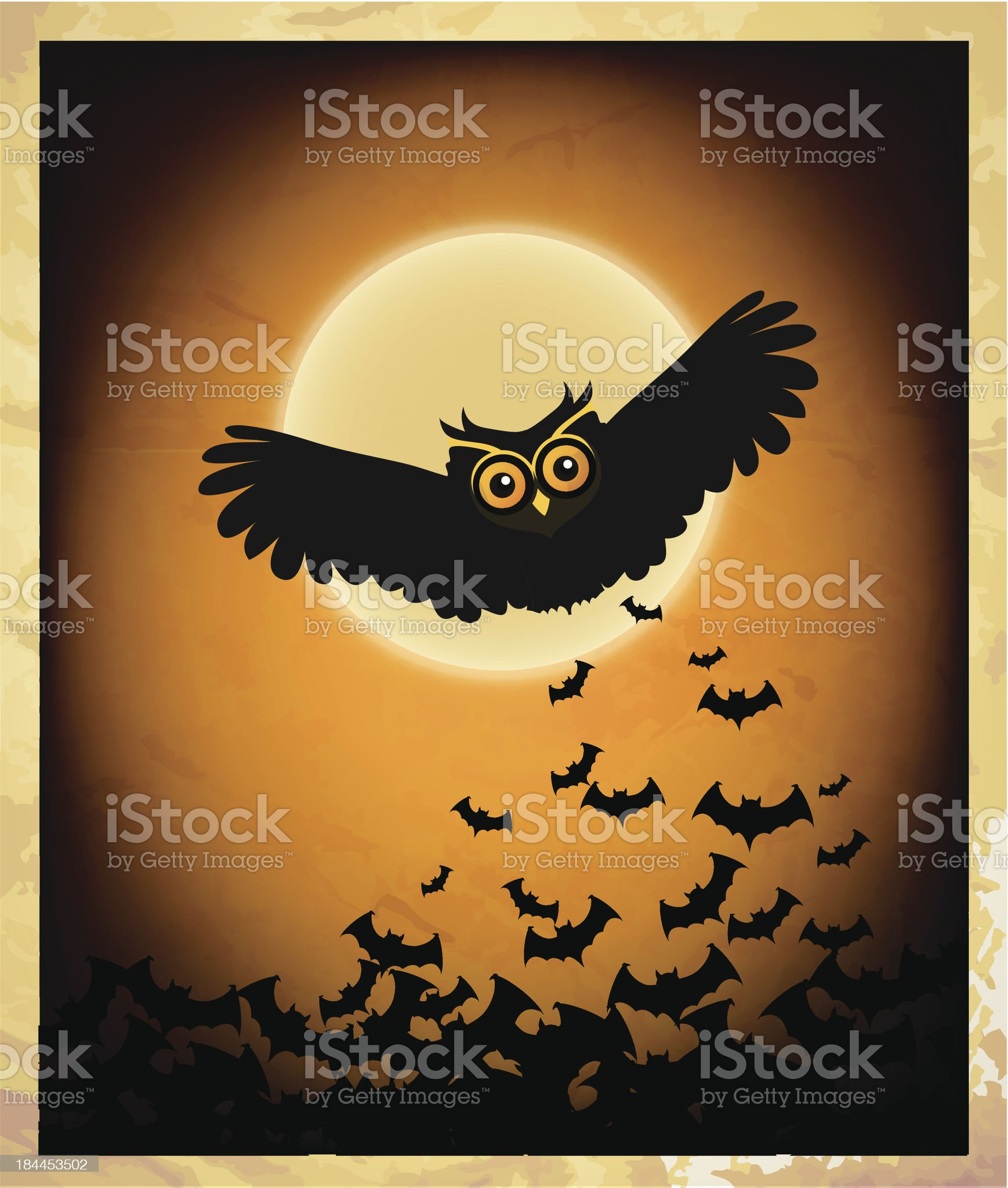 Owl at nite - Illustration royalty-free stock vector art