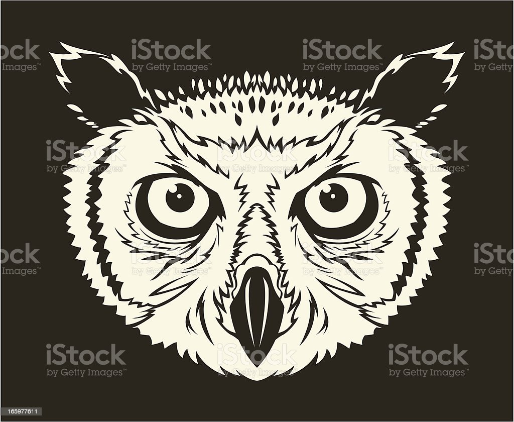Owl head royalty-free stock vector art