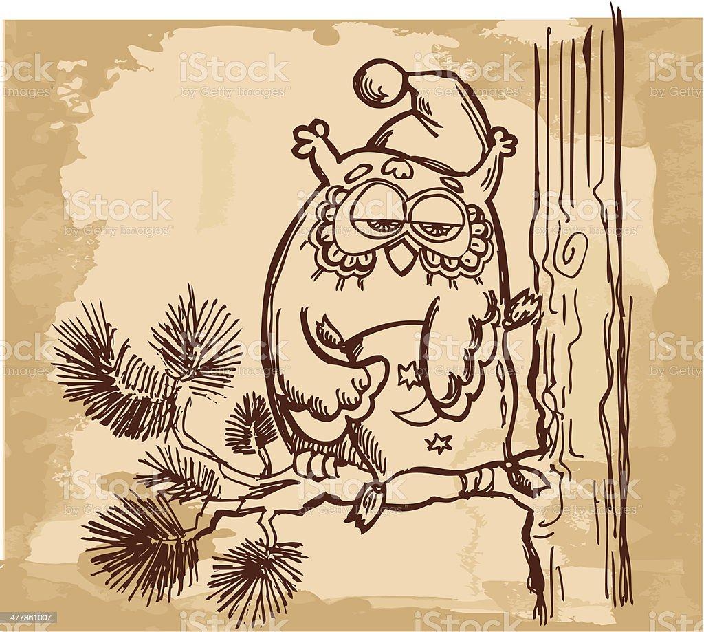 owl on the pine branch vector art illustration
