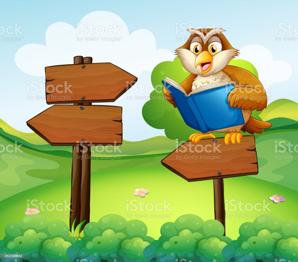 owl reading above an empty arrow signboard vector art illustration