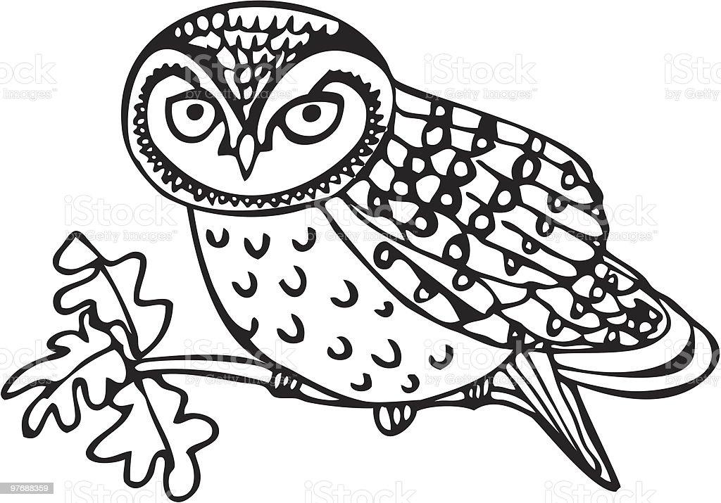 Owlet vector art illustration