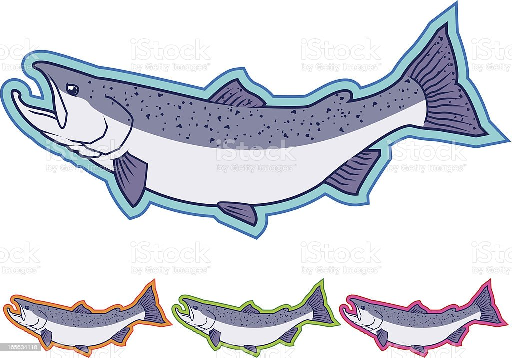 Pacific Salmon Icons - Different Colors vector art illustration