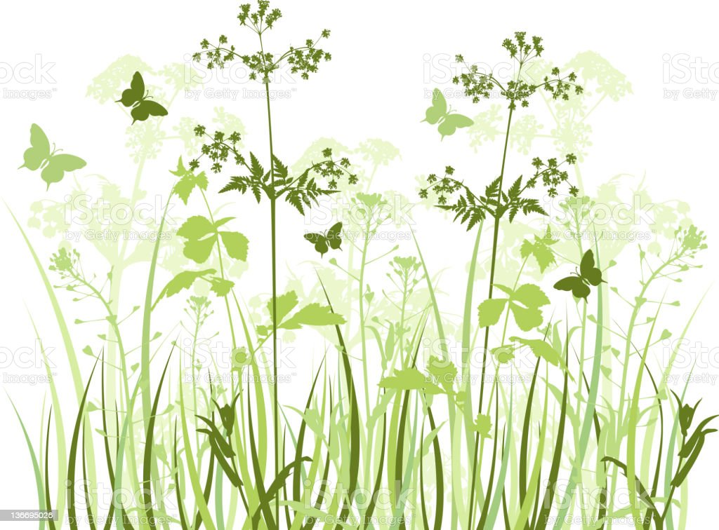 Painting of green meadow with wildflowers vector art illustration