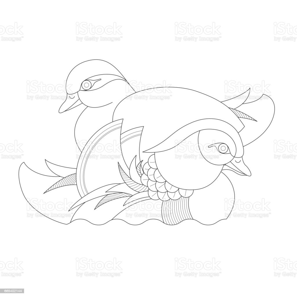 Pair of Mandarin Ducks (Line drawing) vector art illustration