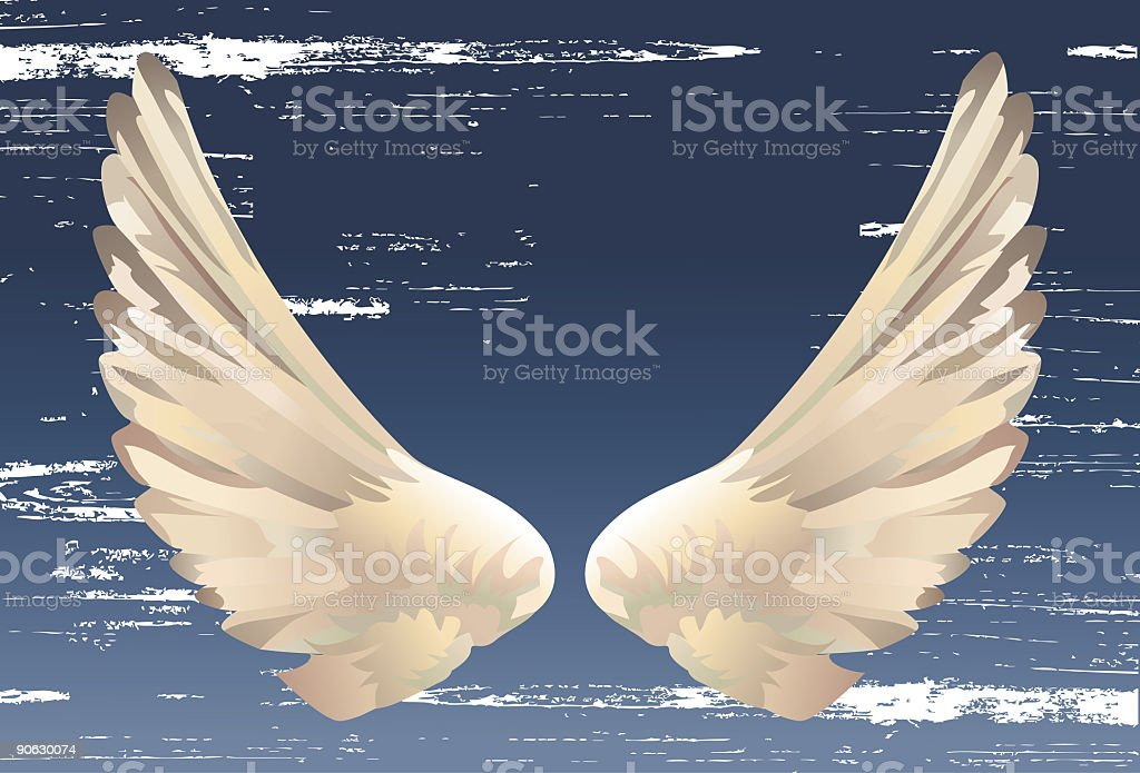 Pair of Pastel Colored Wings on a Textured Blue Background royalty-free stock vector art