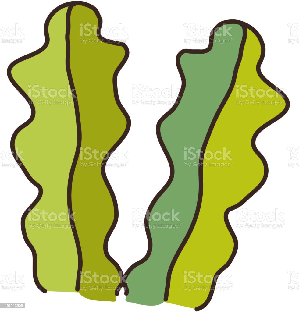 pair of seaweed royalty-free stock vector art