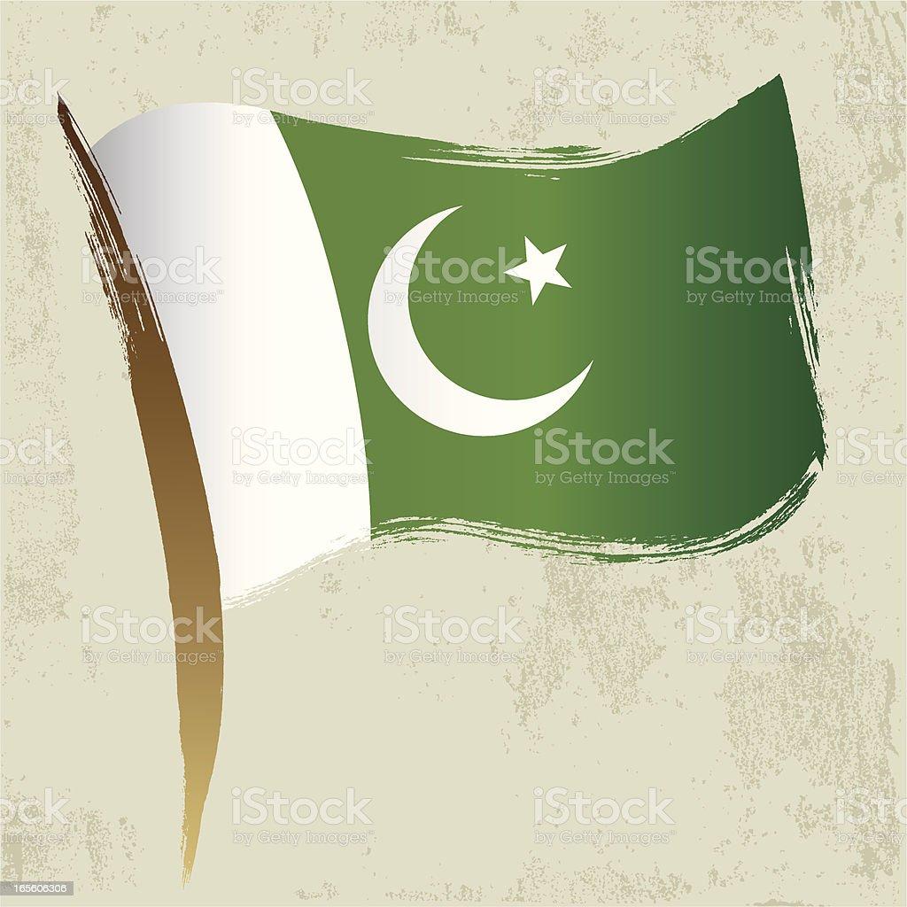 Pakinstini National Flag royalty-free stock vector art