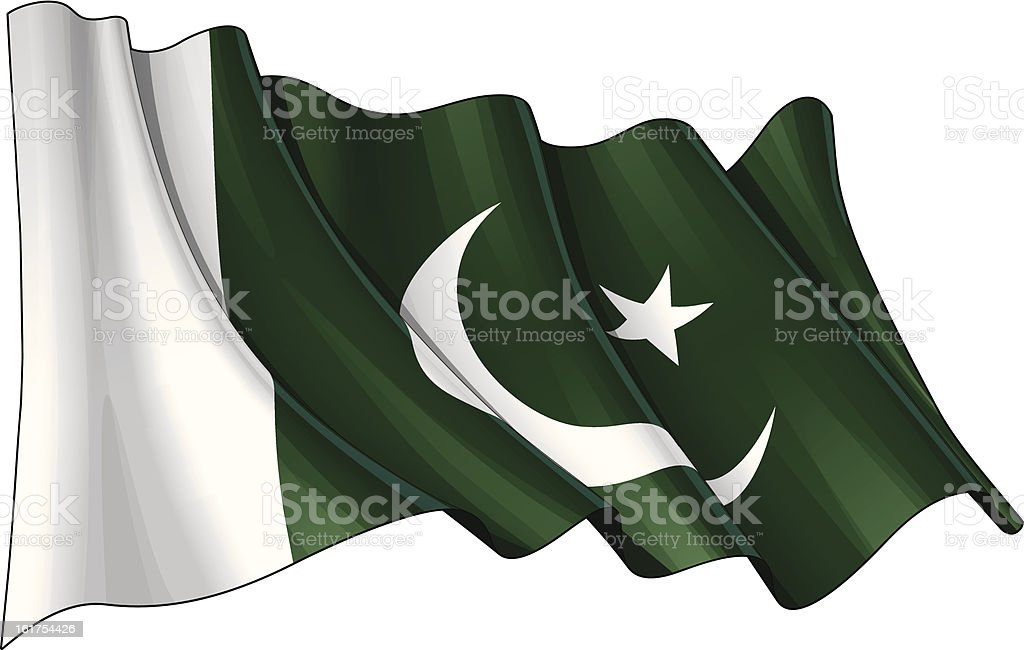 Pakistani Flag royalty-free stock vector art