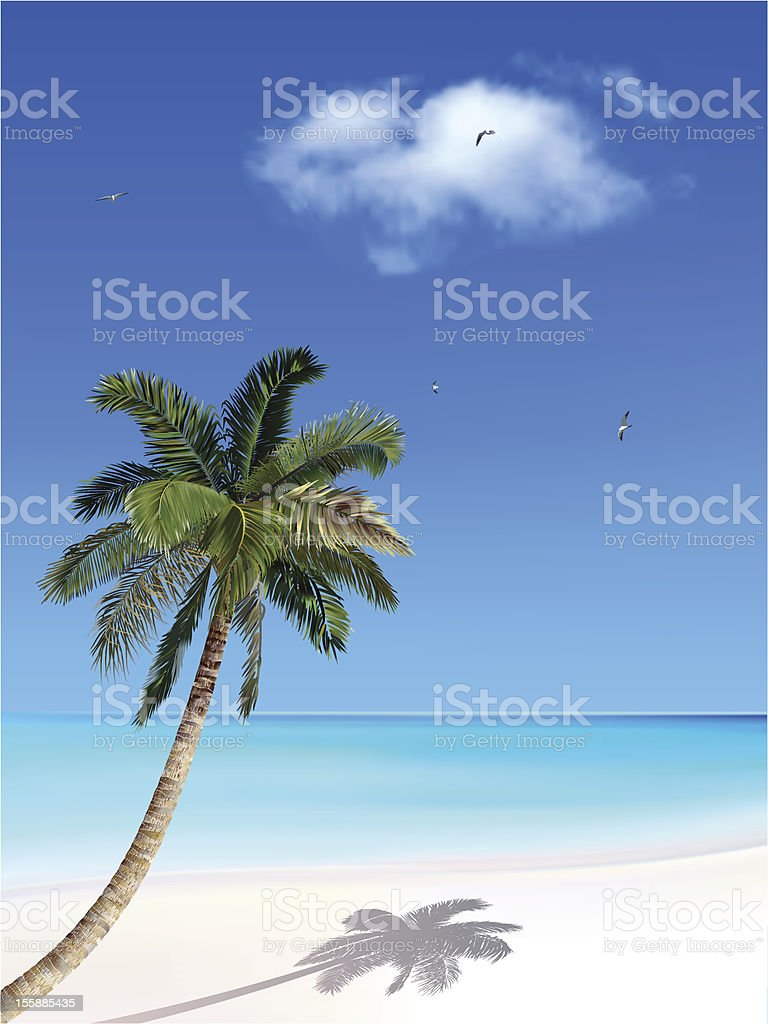 Palm and sea royalty-free stock vector art