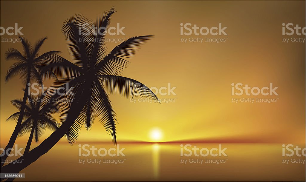 Palm Beach Sea View royalty-free stock vector art
