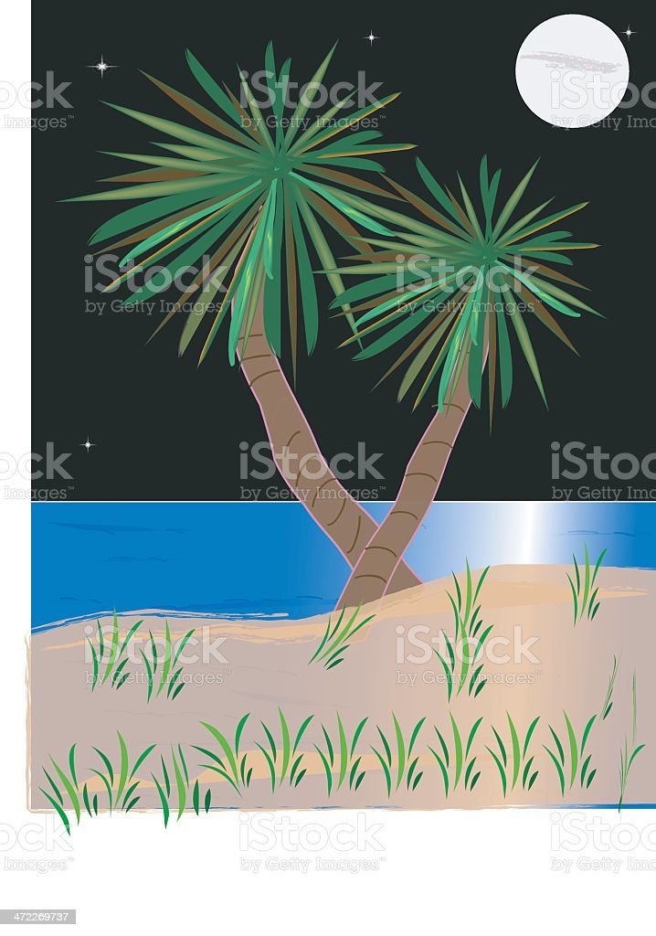 Palm Beach royalty-free stock vector art