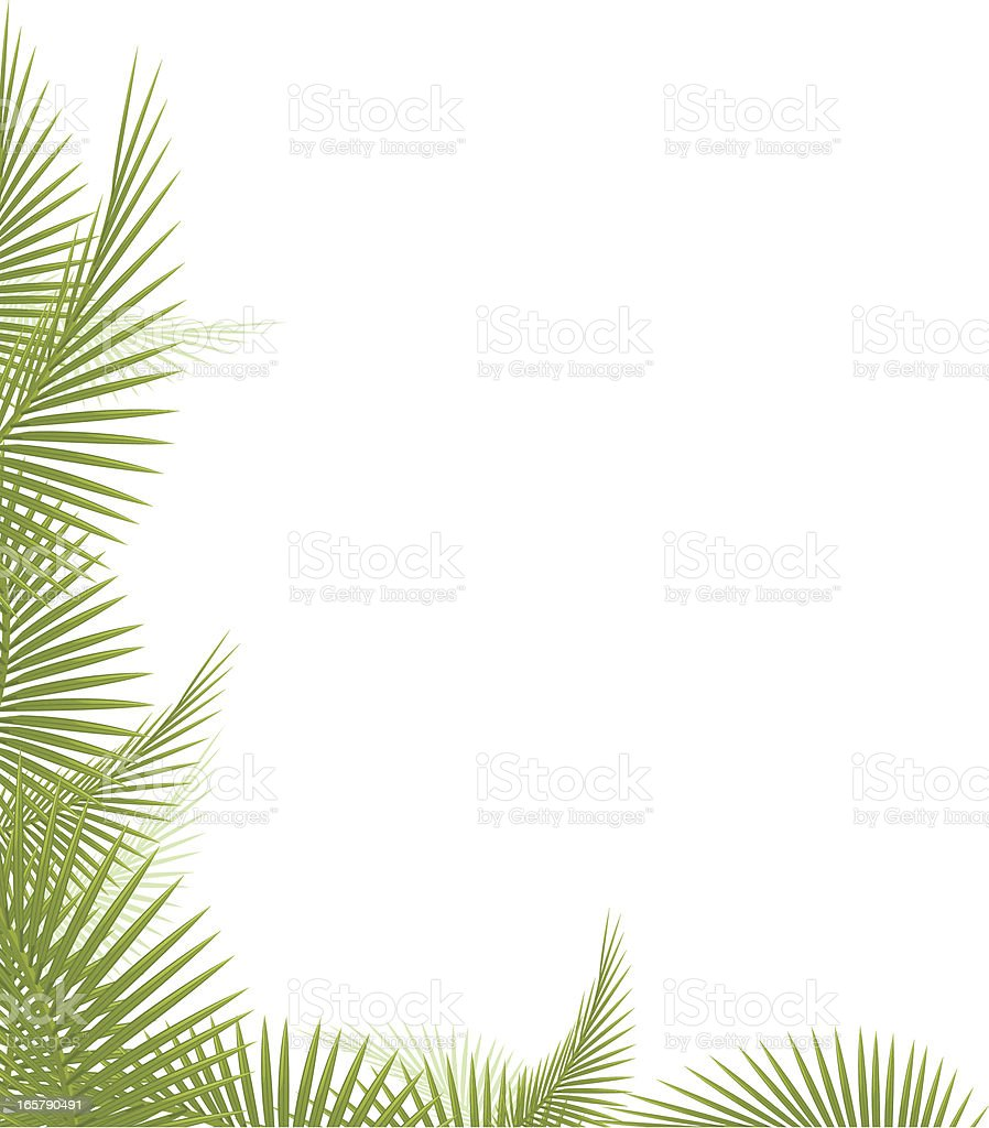 Palm Leaf royalty-free stock vector art