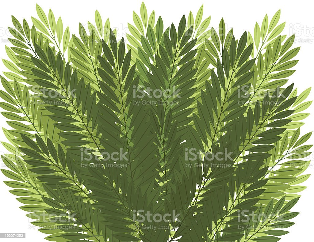 Palm Leaves Background - 2 color schemes royalty-free stock vector art