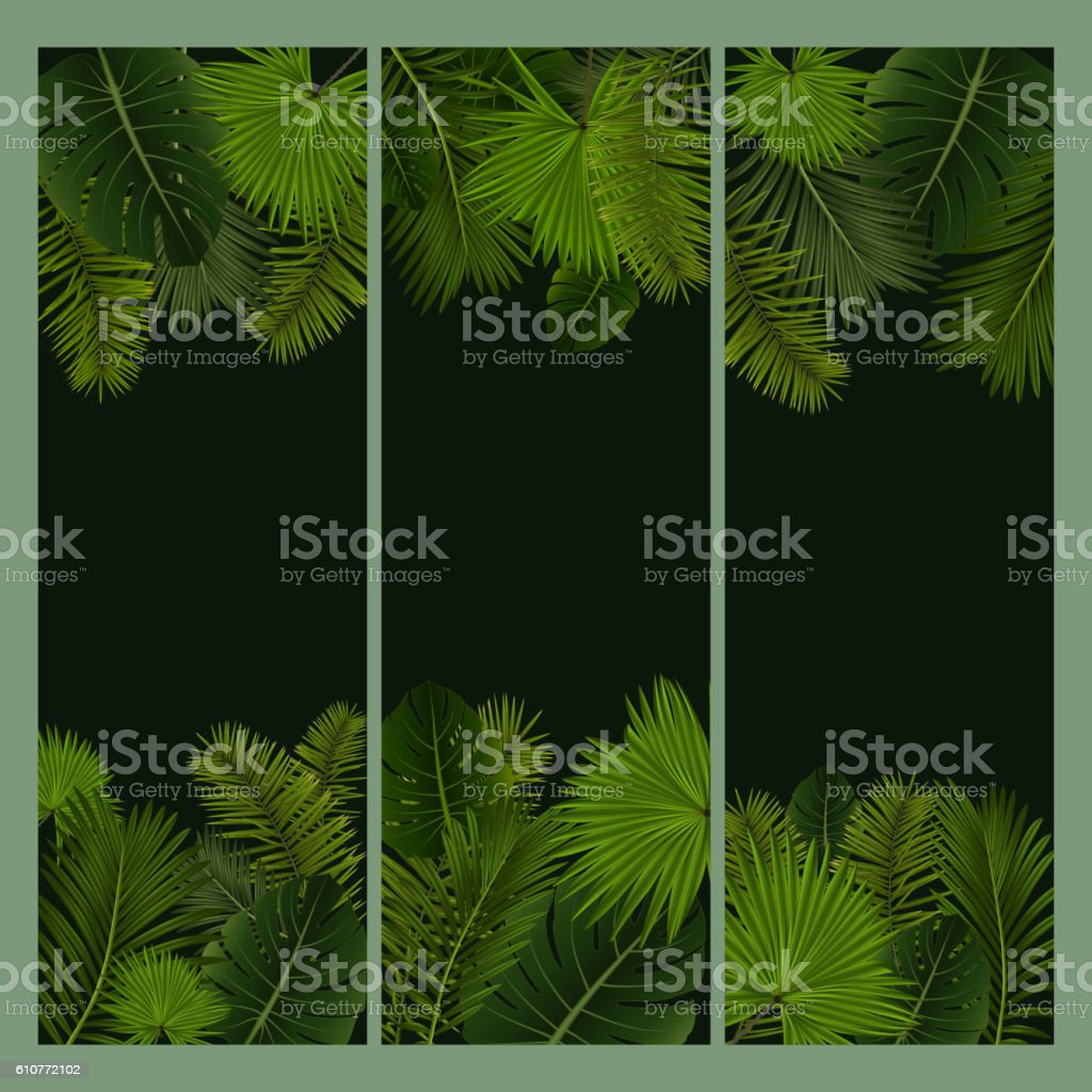 Palm leaves banners vector art illustration