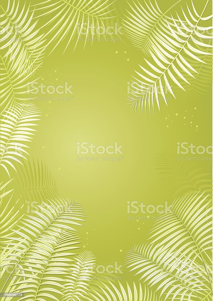 Palm leaves - Vector royalty-free stock vector art