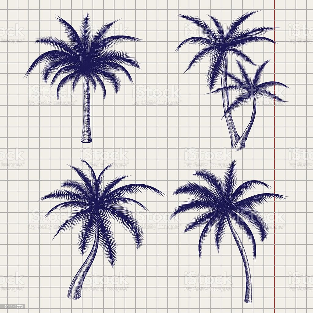 Palm sketches in ball pen style vector art illustration