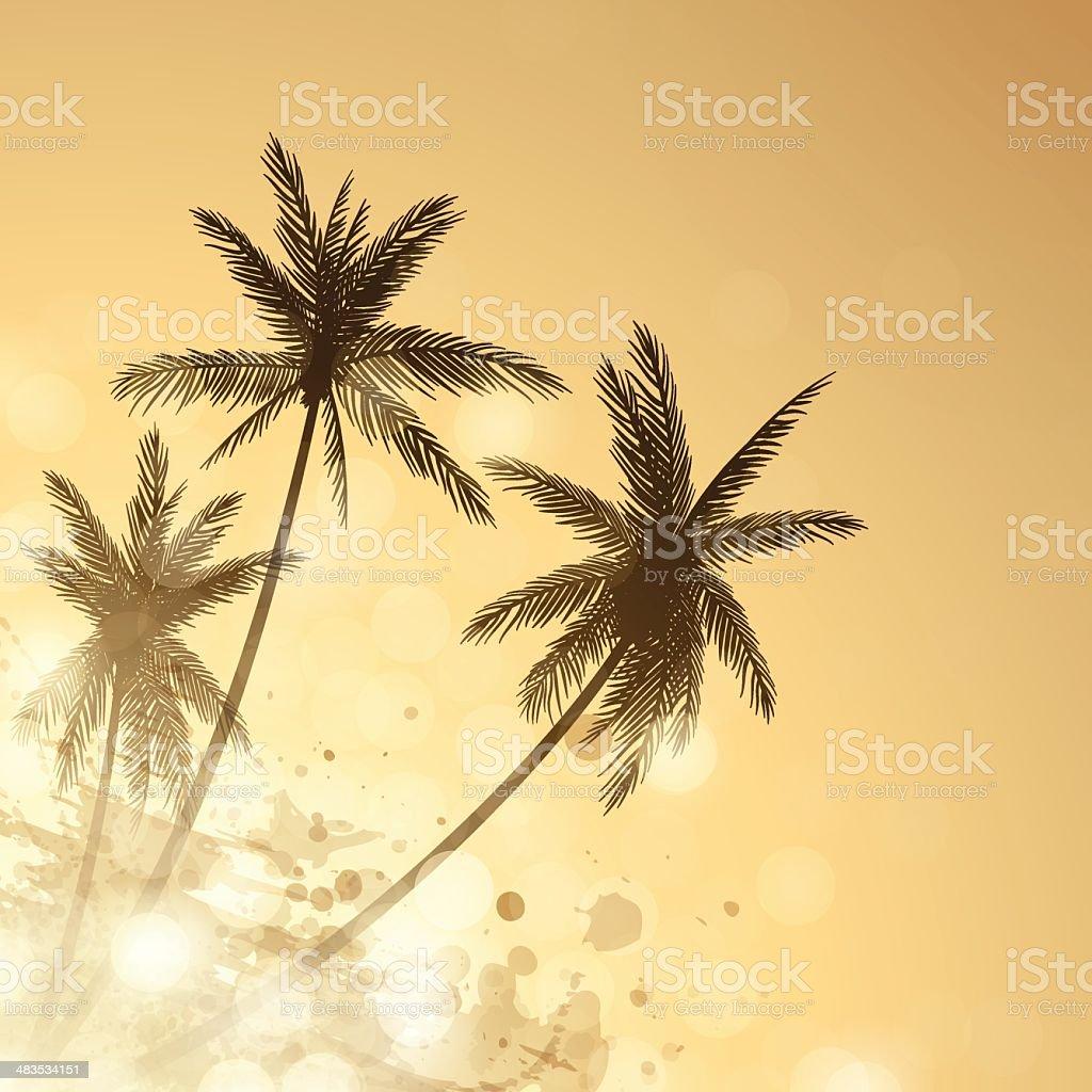 Palm Sunset Background vector art illustration