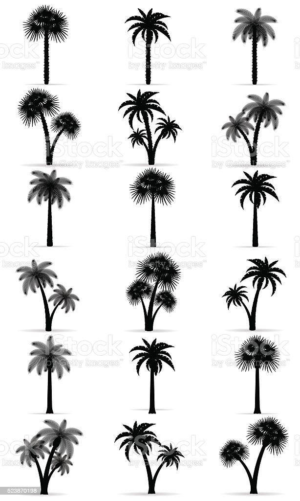 palm tree black outline silhouette vector illustration vector art illustration