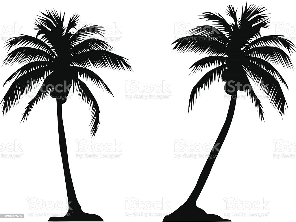 Palm Tree Couple (Vector) royalty-free stock vector art