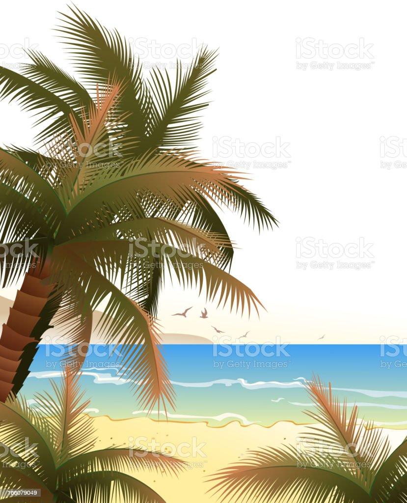 palm tree on beach vector art illustration