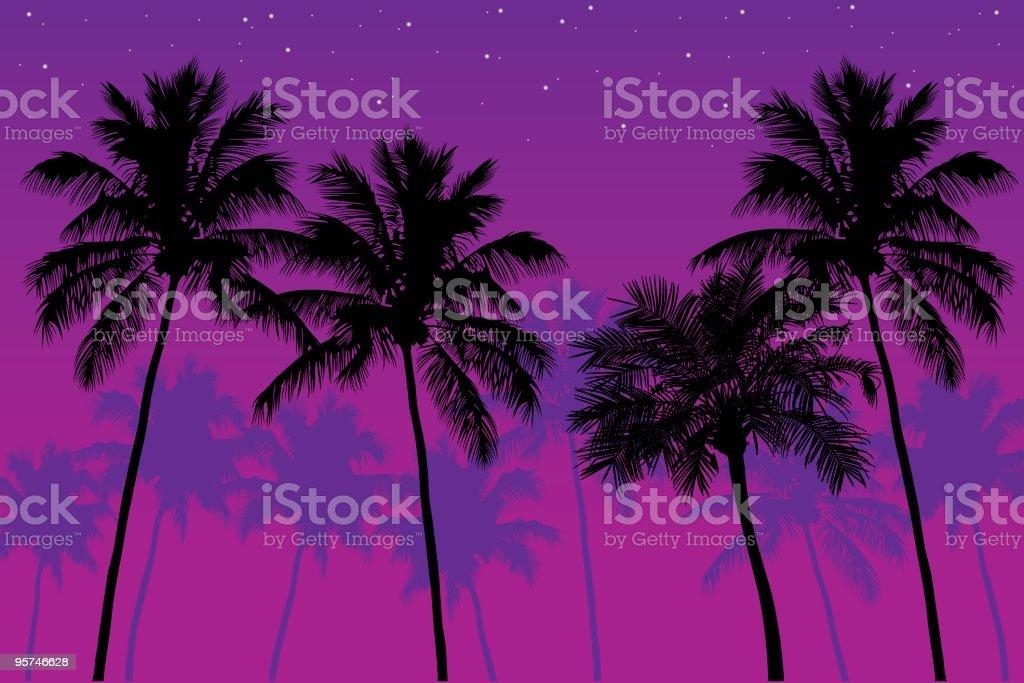 Palm Trees at Dusk vector art illustration