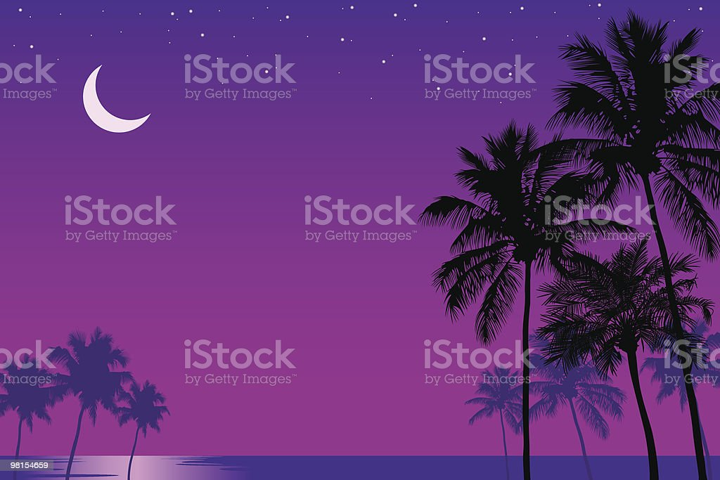 Palm Trees in the Moonlight royalty-free stock vector art