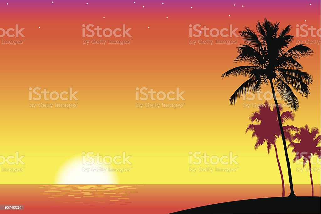 Palm Trees in the Sunset vector art illustration