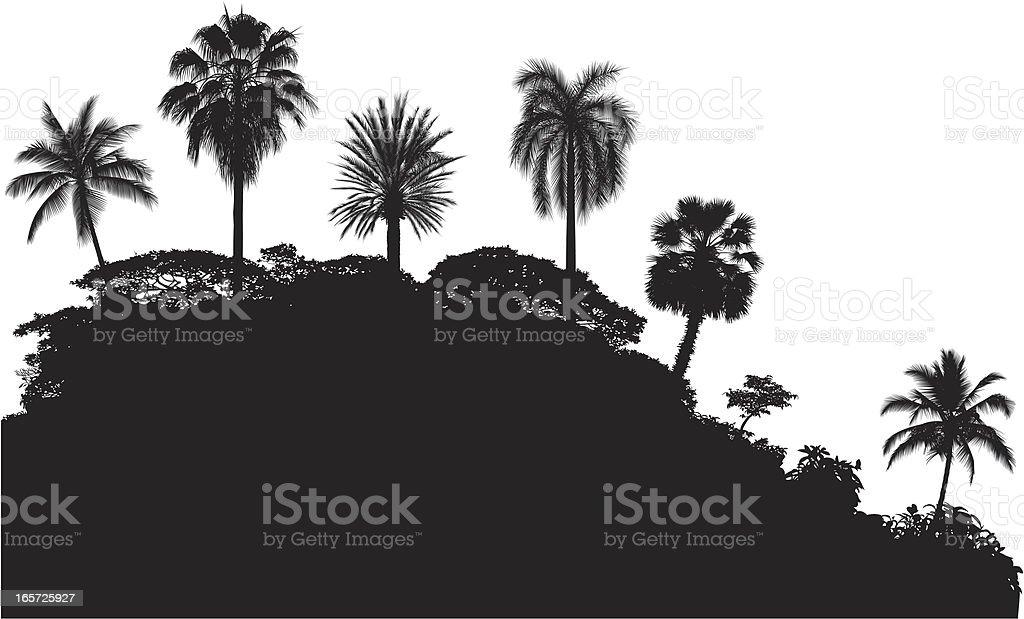 Palm Treetops royalty-free stock vector art