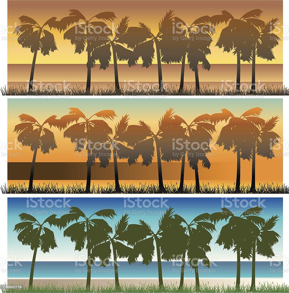 Palms Beach royalty-free stock vector art
