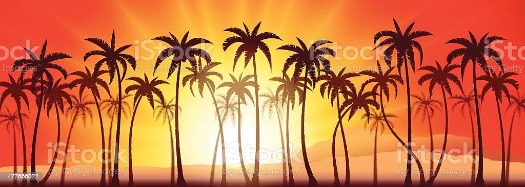 Palms grove sunset vector art illustration