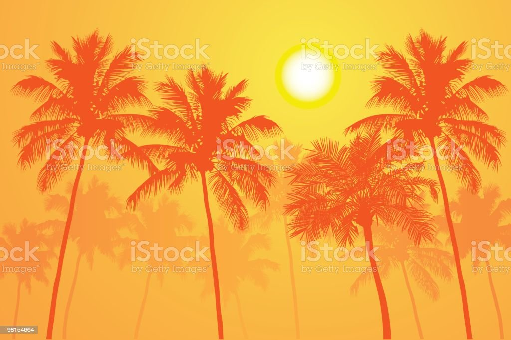 Palms on a Hot Day vector art illustration