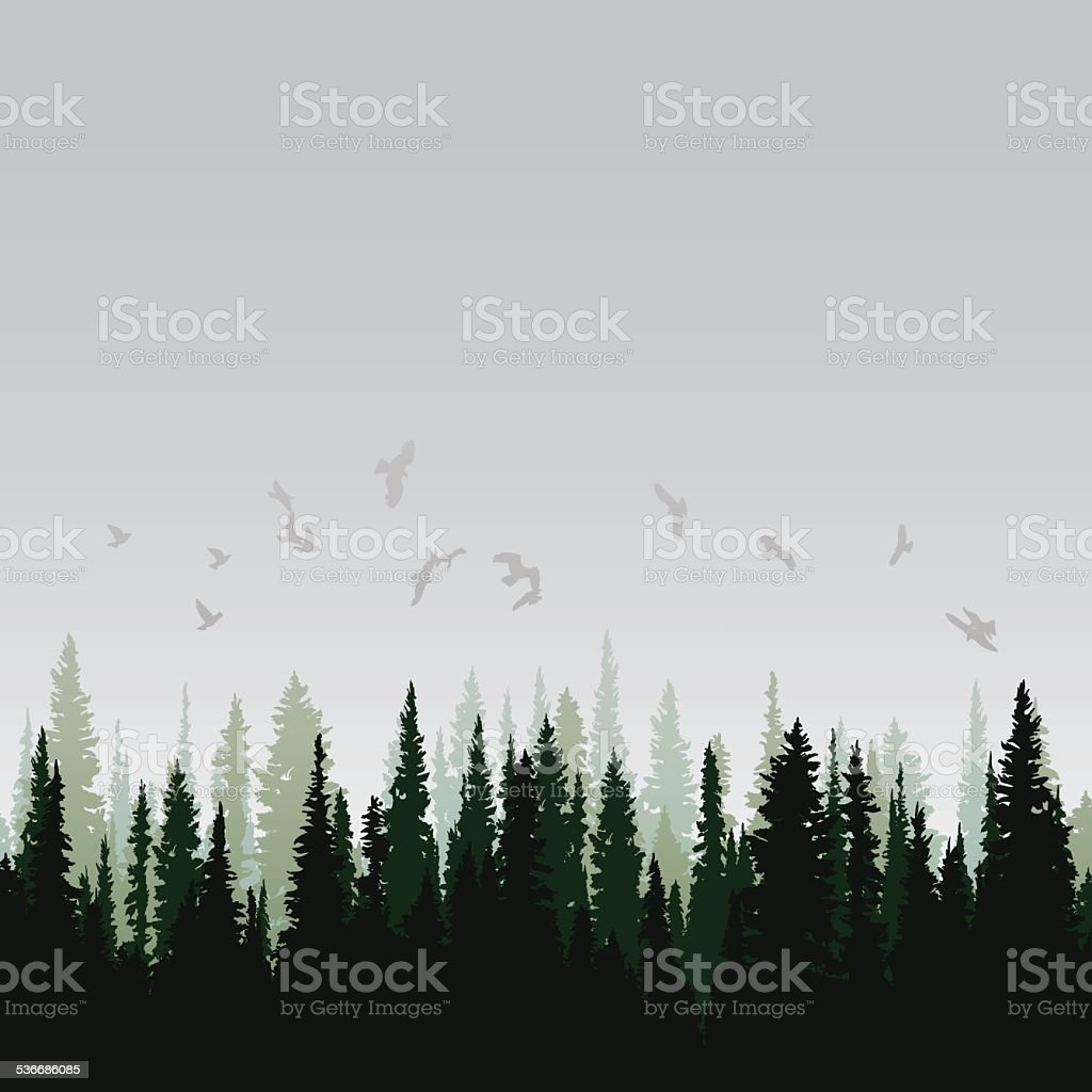 Panorama of wild coniferous forest vector art illustration