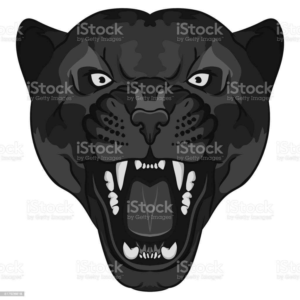 Panther Portrait. Angry wild big cat vector art illustration