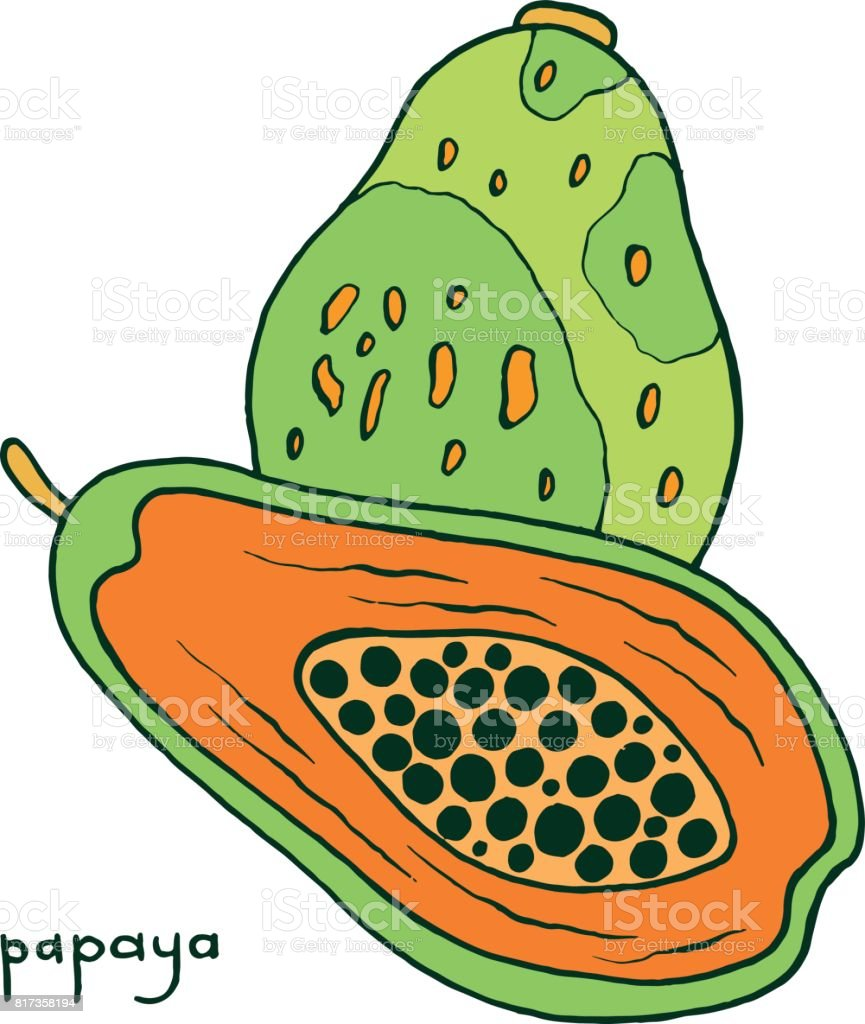 tropical fruit coloring pages tropical custard apple coloring