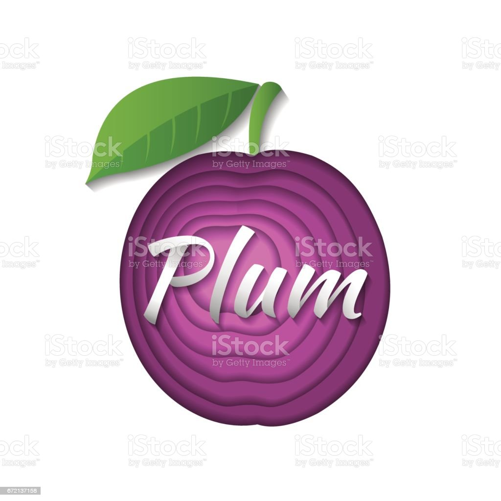 Paper art plum. vector art illustration