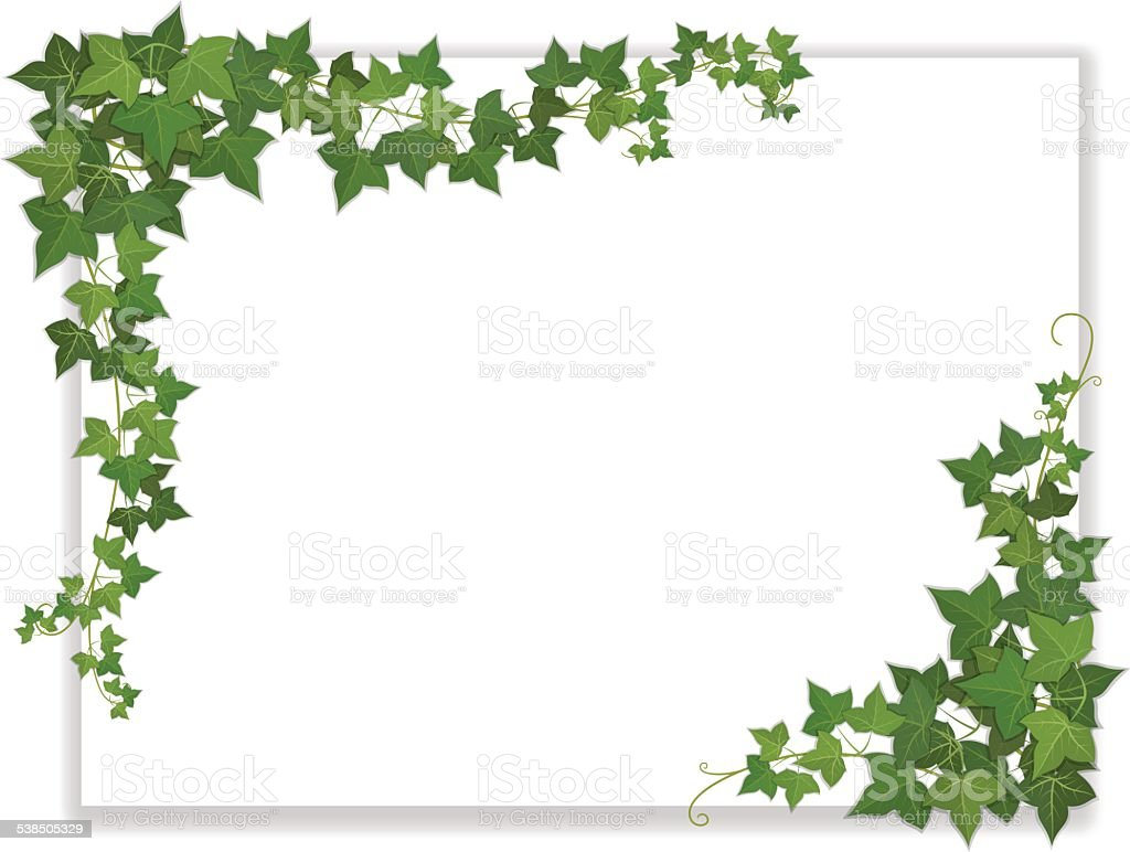 paper sheet decorated ivy vector art illustration