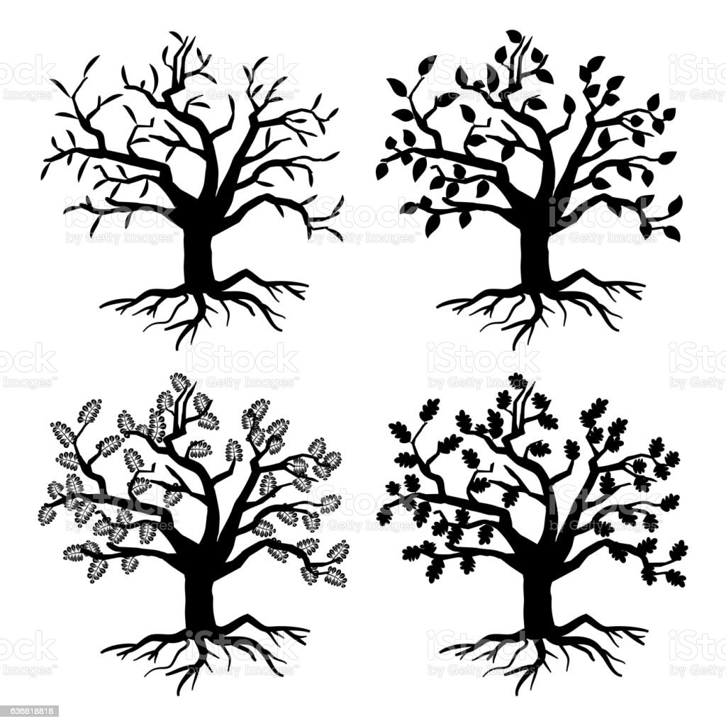 Park old trees. Vector tree silhouettes with roots and leaves vector art illustration
