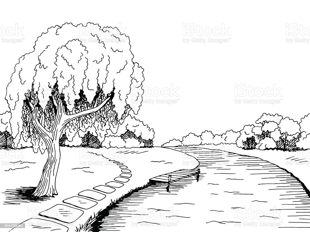 Line Drawing River : Park river willow tree graphic black white landscape