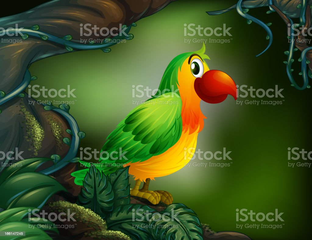 Parrot at the rain forest royalty-free stock vector art