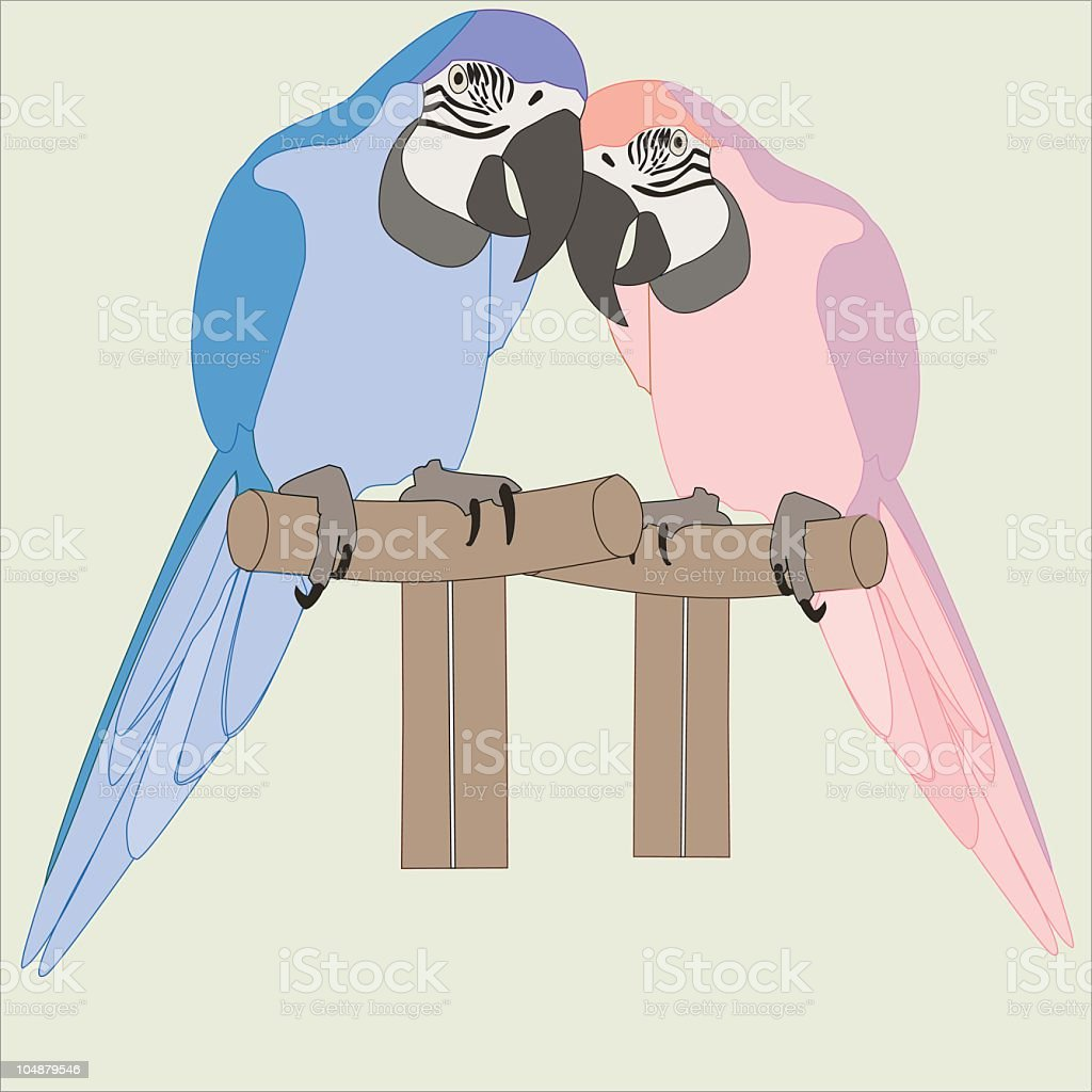 Parrot Pair (Macaws) (Vector) royalty-free stock vector art