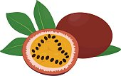 passion fruit and slice.vector illustration