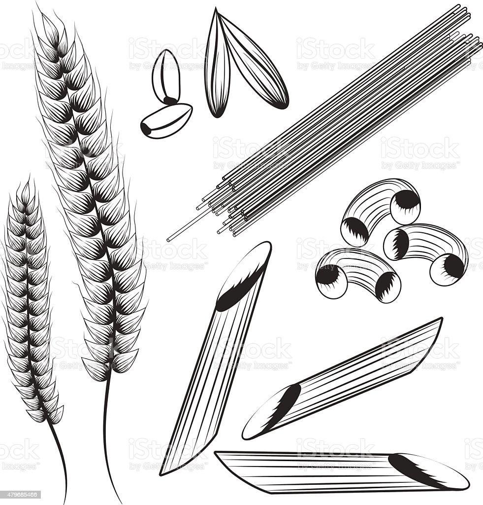 Pasta vector vector art illustration