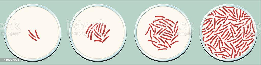 Pathogenic Bacteria Growth vector art illustration