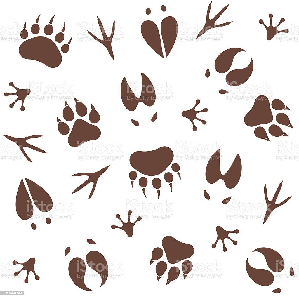 Paw Print. Pattern vector art illustration