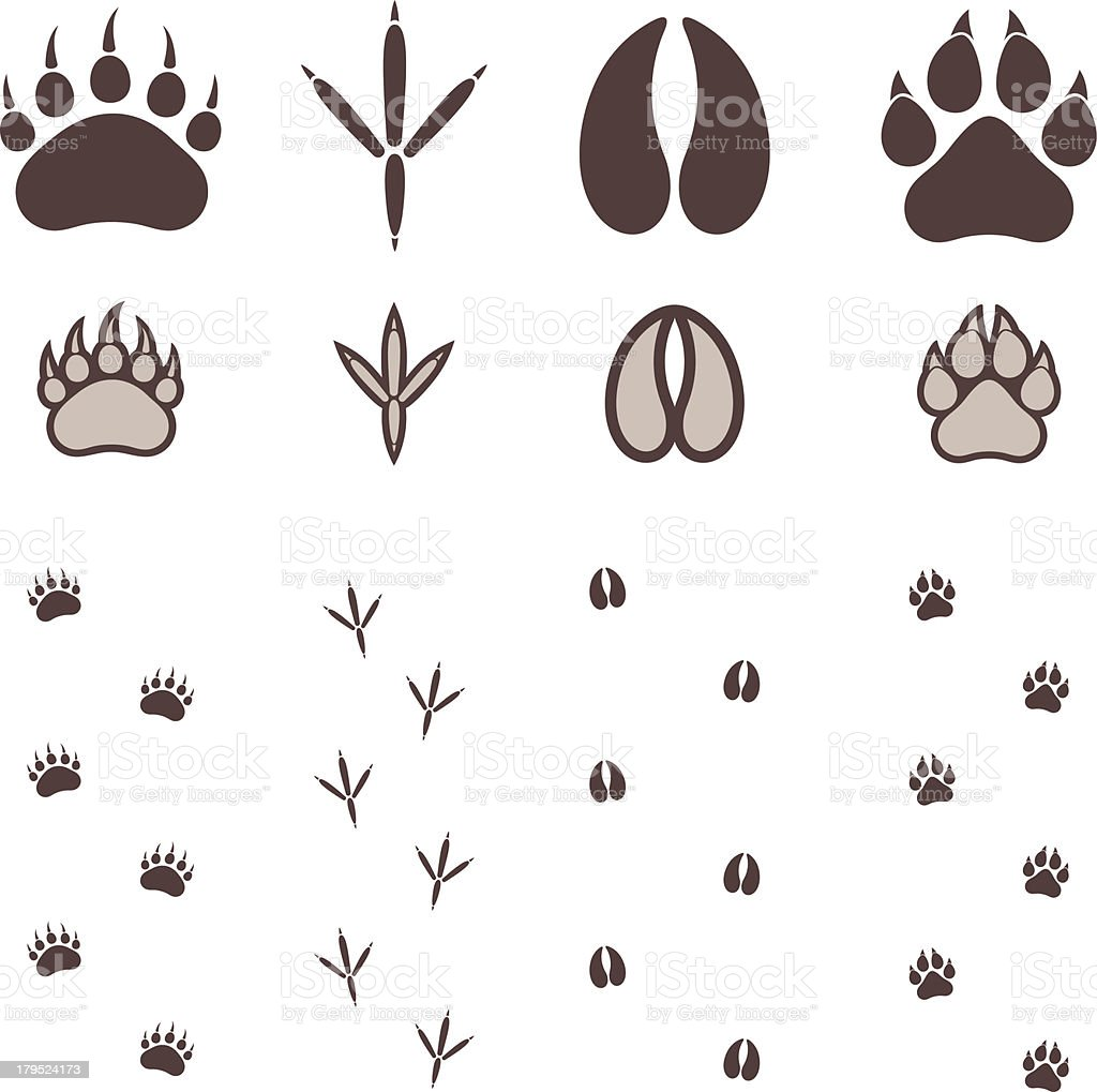Paw Print royalty-free stock vector art