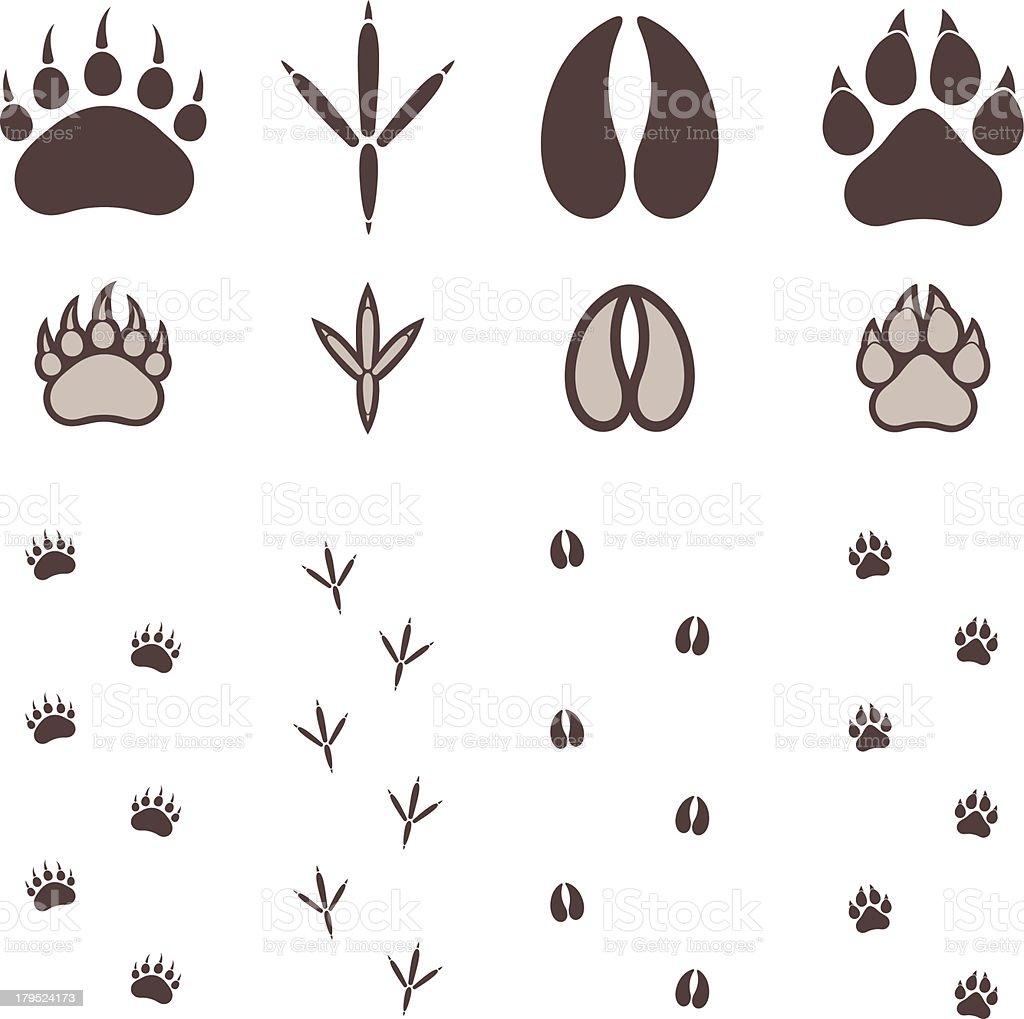 Paw Print vector art illustration