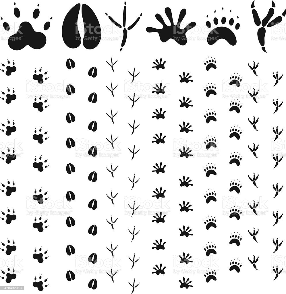 Paw Print royalty-free stock vector art